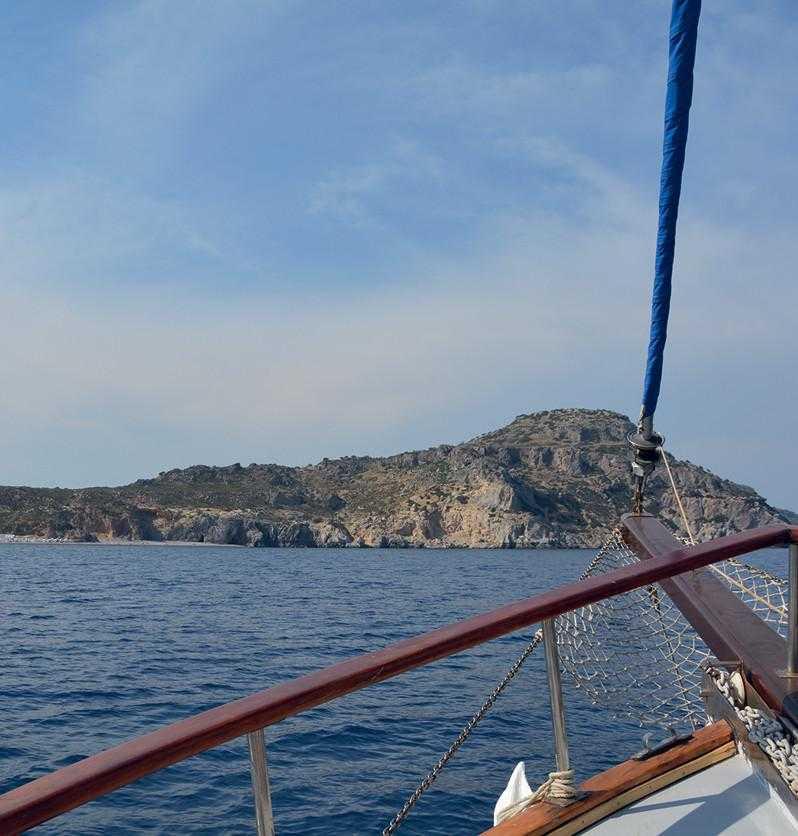 Summer Dreams Daily Cruises