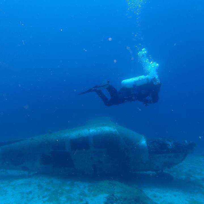 Seals Diving Center