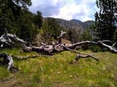 Πεζοπορία στο Ζαγόρι (by Zagori Outdoor Activities)