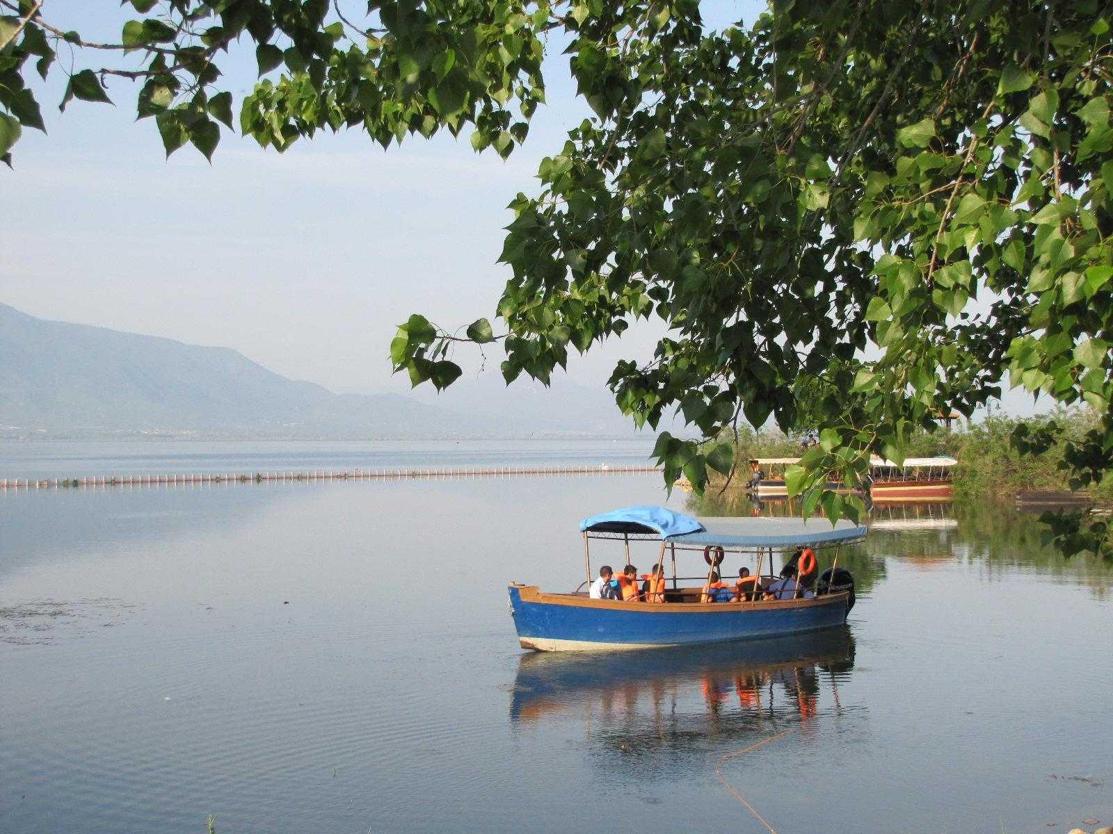 Ποδηλασία στη λίμνη Κερκίνης (by itavros nature activities)