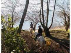 Ιππασία στο Σκλήθρο της Φλώρινας