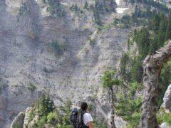 Trekking στους Λούσους – Ψηλή Κορυφή
