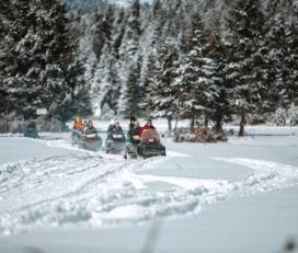 Snowmobile στο Περτούλι