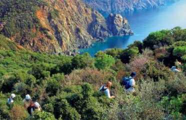 Eco tour στη Σιθωνία – Χαλκιδική – Όρος Ίταμος Natura 2000