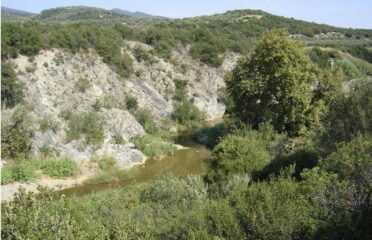 Eco Tour στον Ολύνθιο Ποταμό (φαράγγι Βατονιας) στη Χαλκιδική