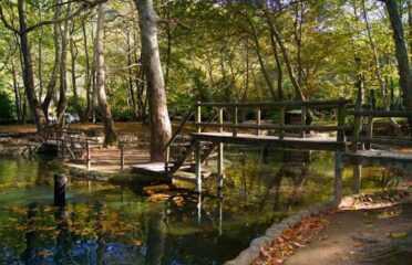 Eco tour στις Φυσικές Πηγές του όρους Βερμίου